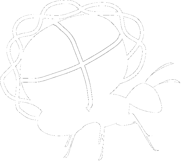 The Bonasio Lab logo